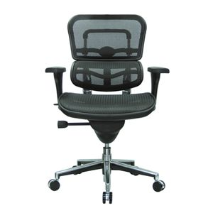 Office Chairs EHuman Mesh Front View