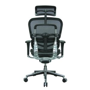 Office Chairs EHuman Mesh Rear View