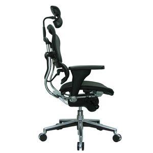 Office Chairs EHuman Mesh Side View