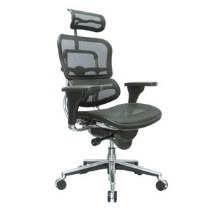 Office Chairs EHuman Mesh with Head Rest