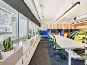 Cromer CEO Office Fit Out 4
